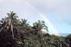 A Hawaiian rainbow from a Hilo apartment building Photo