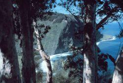 Looking northwest across the Waipio Valley to the Kohala Mountains On the northwest tip of Hawaii. Photo