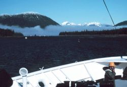 Wrangell Narrows Photo