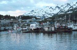 Fishing boats at Cordova Photo