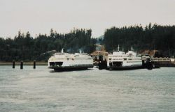 Puget Sound ferry boats Photo
