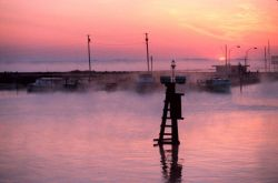 Advection fog and the morning sun coming up over the Chesapeake Bay and Fishing Creek. Photo