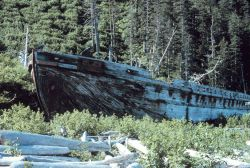 An old wooden ship cast ashore. Photo