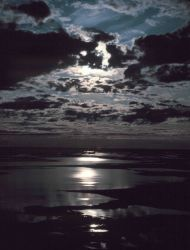 Moonbeams reflecting off the Beaufort Sea. Photo