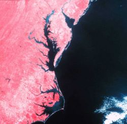 Cape Hatteras, Chesapeake Bay, and Delaware Bay as observed from a NOAA satellite with an infra-red sensor. Photo