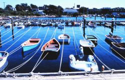 Woods Hole Yacht Club, Great Harbor at Woods Hole (National Marine Fisheries Service facility on right) Photo