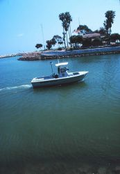 A harbor patrol boat at Dana Point Photo