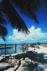 Fishing in paradise - the stone crab fishery at Islamorada Photo