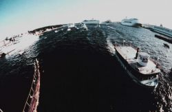 A fisheye view of the cruise ship port at Port Everglades Photo