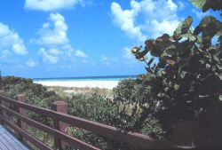 A view of the beach along the Atlantic Ocean Photo