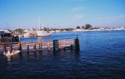 Shrimp boats docked along the Caloosahatchee River Photo