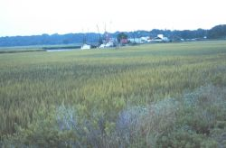 A small fishing village off Route 80 Photo
