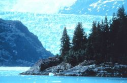 A glacier looming above a rocky point Photo