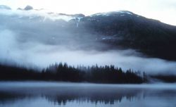 Fog and mist reminiscent of an impressionist painting overlying waters, trees, mountain valleys of Prince William Sound Photo