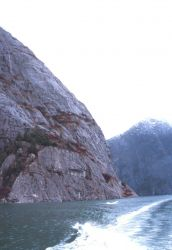 A wake disturbs the placid waters of Tracy Arm Fjord Photo
