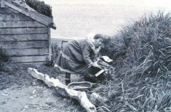 Eskimo woman stringing fish to dry Photo