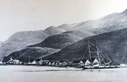 A view of Unalaska Photo