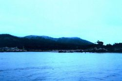 Portion of composite image of Point Lobos. Photo