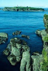 Tatoosh Island Lighthouse. Photo