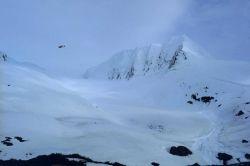 Portage Glacier area. Photo