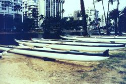 Outrigger canoes along the Ali Wai Canal. Photo