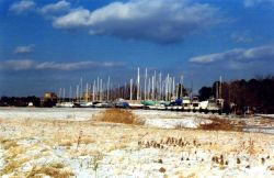 Sailboats in hibernation for the winter. Photo