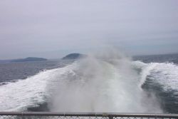 Leaving Bar Harbor behind on a whale-watching cruise to the Gulf of Maine. Photo