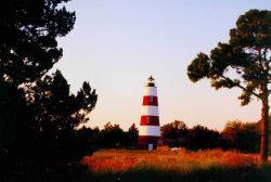 Sapelo Island Lighthouse Photo