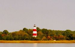 Sapelo Island Lighthouse from Doboy Sound Photo