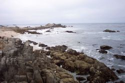 The rocky shores in the Point Pinos area composed of highly erosion resistant Santa Lucia Granodiorite. Photo