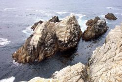 An islet of Santa Lucia Granodiorite, an erosion-resistant rock that underlies most of the Point Lobos area. Photo