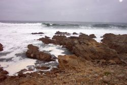 Rock and surf at Asilomar State Park. Photo