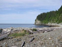 Elrington Point, Prince William Sound area. Photo