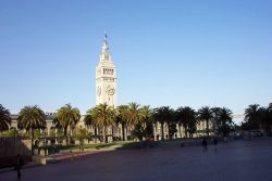 The Ferry Building and palm trees along the Embarcadero illuminated in the late afternoon sun. Photo