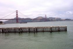 A view of the Golden Gate Bridge as seen from the NOAA Gulf of the Farallons National Marine Sanctuary Headquarters. Photo