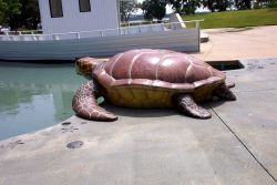 Sea turtle sculpture at Daniel Island Children's Park. Photo