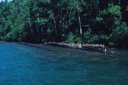 Shipwreck near shore in the Apostle Islands. Photo