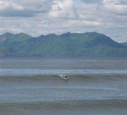 NOAA Ship RAINIER personnel surfing on Kodiak Island Photo