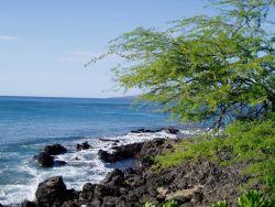 A rocky lava shoreline. Photo