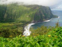 Waipi'o Valley Photo