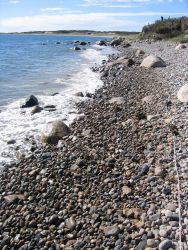 A boulder and cobble beach at Quicks Hole. Photo