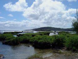 Coastal view, Guam. Photo