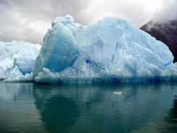 An iceberg in Tracy Arm Photo