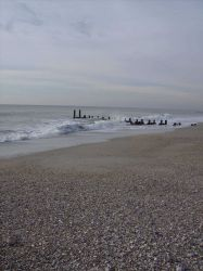 Apparent remains of pier on the shores of Cape May. Photo
