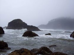 Rocks, surf, fog, seaweed, and fog-enshrouded headland at Ecola State Park. Photo