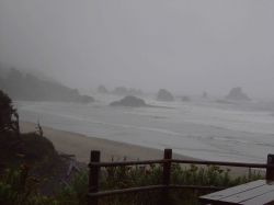 A lonely picnic table covered by mist and fog at Ecola State Park. Photo