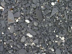 A cobble beach Photo