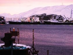 Large fishing vessels tied up at fuel facility. Photo
