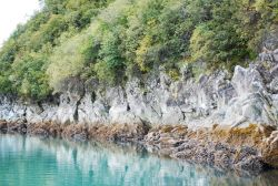 Rock cliff at north end of Blue Mouse Cove at half-tide. Photo