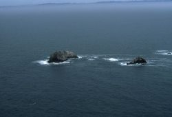 Aerial views of the wind-swept sea-swept Farallons, a virtual wilderness less than thirty miles from downtown San Francisco Image
